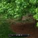 Birdfeeder Abundance: an Attention Restoration Meditation (3 minutes)